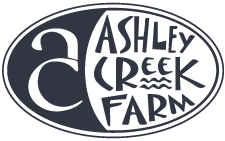 Ashley Creek